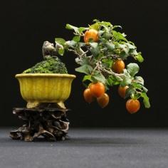 european-bonsai-sans-saulieu-bonsai-show-2016-31