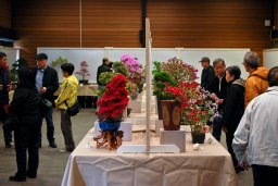 Vancouver Penjing Show. May 13-14 2017
